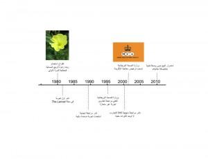 Eczema timeline